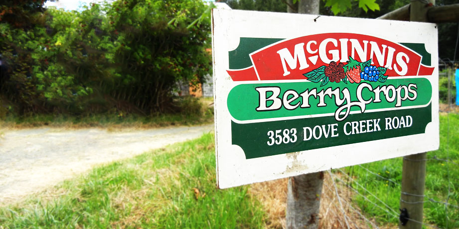 McGinnis Berry Crops